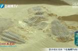 世界遗产在中国丨澄江化石遗址