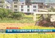 连城:9.3万亩晚稻开镰 机械化助力颗粒归仓