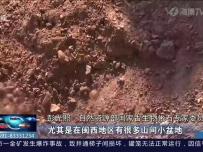 重大发现!福建首次发现恐龙足迹