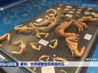 莆田:世界螃蟹馆亮相湄洲岛