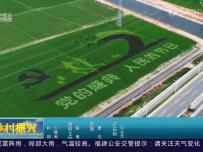 晋江彩色稻田