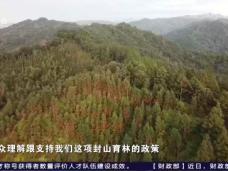 《时代先锋》绿色发展之路——长汀:迎回绿水青山方得金山银山