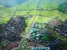 《新闻启示录》内外力结合 助推乡村产业振兴