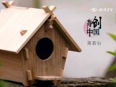 《新视觉》青创中国 郑若行