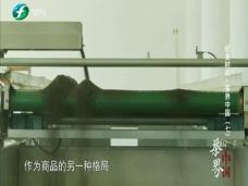《纪录时间》茶界中国(七)
