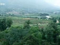 《TV风景线》福清旅游新天地 乡野风情陈家湾