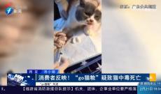 """《律师在现场》消费者反映!""""go猫粮""""疑致猫中毒死亡"""