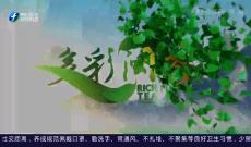 《多彩闽茶》4月4日