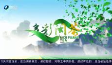 《多彩闽茶》4月11日