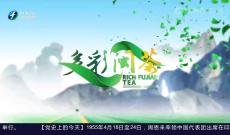 《多彩闽茶》4月18日