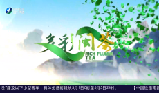 《多彩闽茶》5月2日