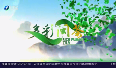 《多彩闽茶》5月9日