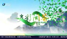 《多彩闽茶》5月16日