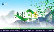 《多彩闽茶》5月30日