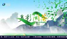 《多彩闽茶》6月20日