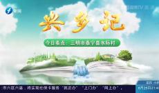 《兴乡记》:三明市泰宁县水际村