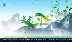 《多彩闽茶》7月25日