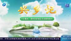 《兴乡记》漳州市芗城区天宝镇珠里村