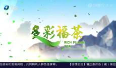 《多彩闽茶》8月8日