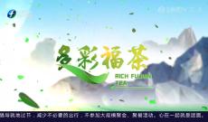 《多彩闽茶》9月19日