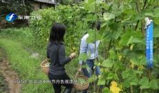 台湾青年张欣颐:美丽原乡设计师