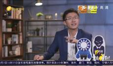 《宝岛,报到!》台湾政坛陷论文大乱斗