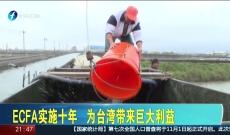 《台湾新闻脸》9月21日