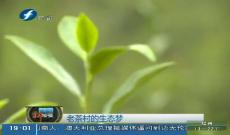 《福建新发现》老茶村的生态梦