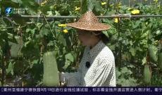 兴农讲堂之田园公开课