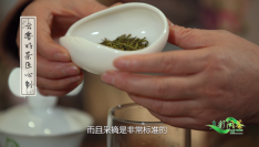 多彩闽茶︱高山绿茶这样泡,又香又甜