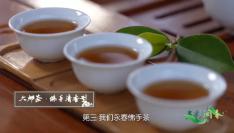 """多彩闽茶︱百年""""佛手"""",独特香气这般来"""