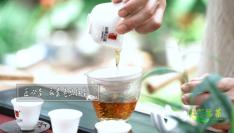 """多彩福茶︱""""野""""味老丛红茶,让你喝一次就记住它"""
