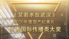 再接再厉!《艾若水在武汉》再获国家广电总局表彰