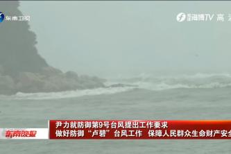 """尹力就防御第9号台风提出工作要求   做好防御""""卢碧""""台风工作   保障人民群众生命财产安全"""
