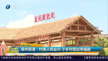 泉州泉港:村美人和业兴 小乡村蹚出幸福路