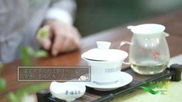 """多彩福茶︱茉莉白龙珠,延续""""鲜爽留香""""的福州味道"""