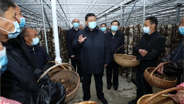 山水情深——跟着总书记一起建设美丽中国