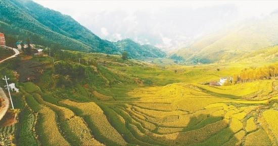 福建尤溪:大力发展绿色农业、智慧农业